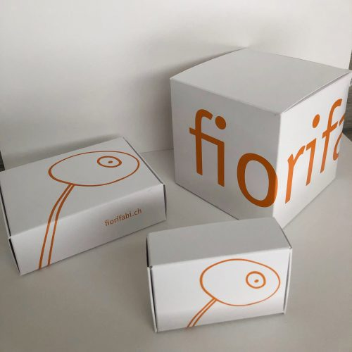 SET strategici fiorifabi.ch